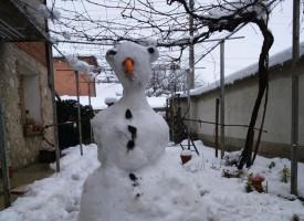 Малчугани спретнаха ленивеца Сид вместо снежен човек