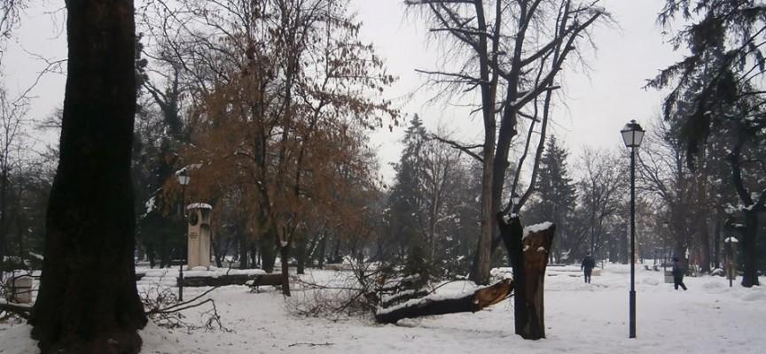 Батак, Велинград и Сърница все още са в бедствено положение