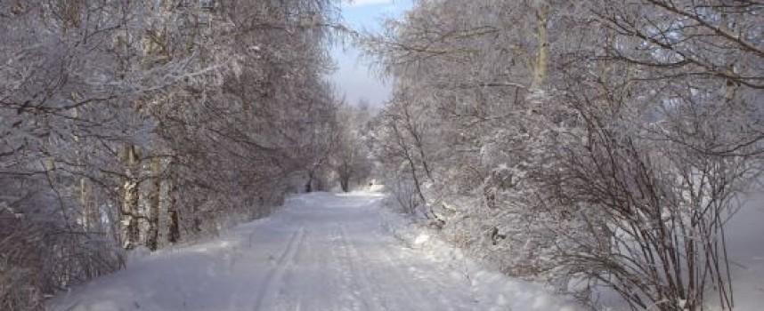 До утре още 30 санти сняг, код – оранжево