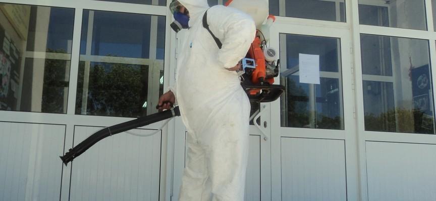 Пръскат срещу бълхи и мишки в Панагюрище