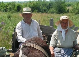 """ДФ""""Земеделие"""" – Пазарджик все още без шеф"""