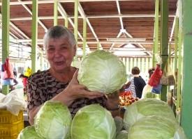 Цените на зеленчуците тръгнаха надолу
