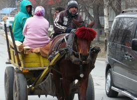 В Ракитово: Съседска свада свърши в болницата