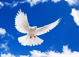 Параклис посветен на Свети Дух има в Козарско