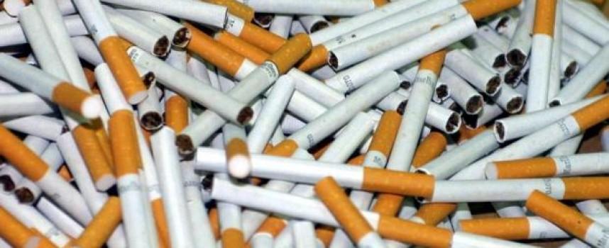 """3151 къса цигари без бандерол иззеха от кв. """"Изток"""""""