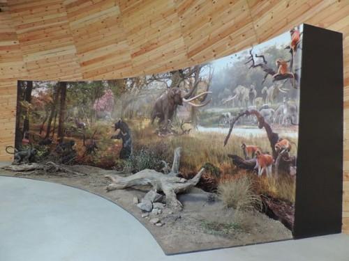 23dorkovo-muzei-diorama.JPG-99978-500x0