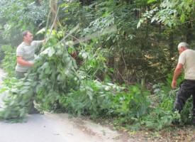 Областният управител се включи в почистването на шубраците над Дебръщица