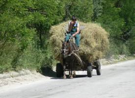 Избори ще има във всички села на общината