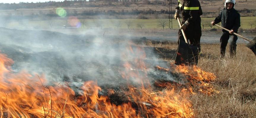 Цигари подпалиха стърнища край магистралата