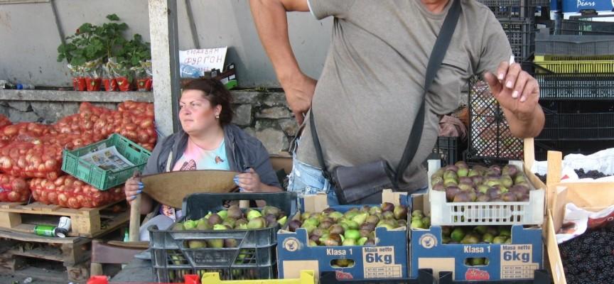 В Пазарджик: Пет лева за кило боровинки