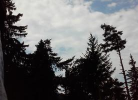 Мъгла и лек дъждец съпътстват търсачите на Мехмет