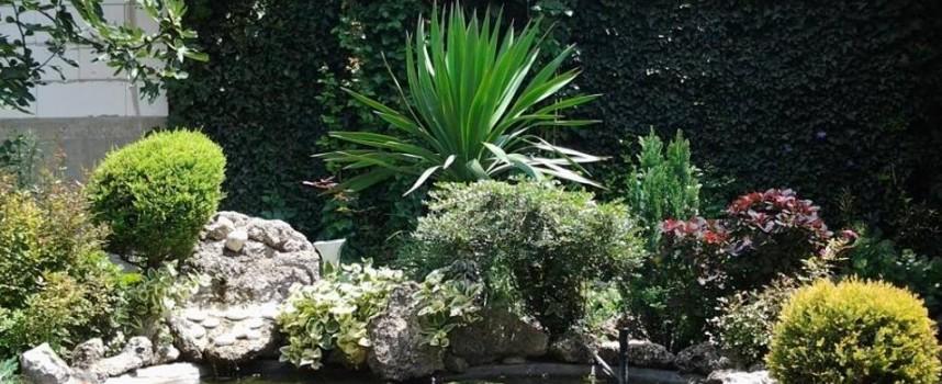Дамите на ГЕРБ с конкурс за най-красива градина