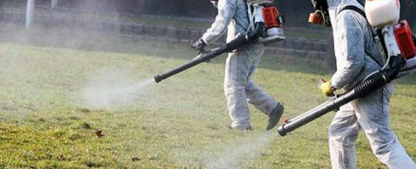 Кърлежи, комари, мушици – виж опасностите, които ни дебнат чрез тях