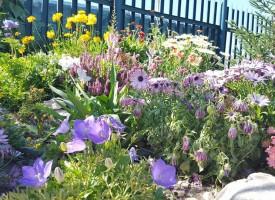 Туристи: Мандра Равногор е в Райската градина