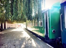 Добрата новина: Повече влакове в разписанието на теснолинейката за 2016 -та