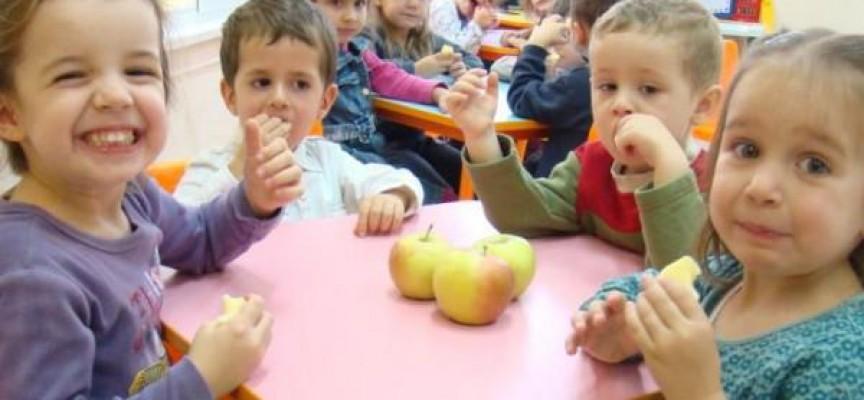 РЗИ провери над двеста училища и градини, няма нарушения в менюто на децата