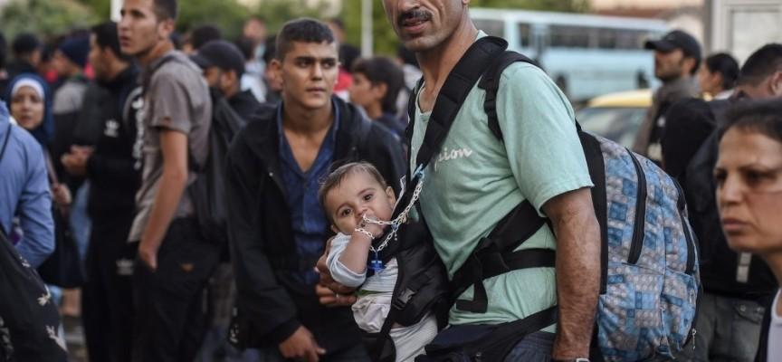 Стриктна идентификация на мигрантите поиска Илияна Йотова в Европарламента