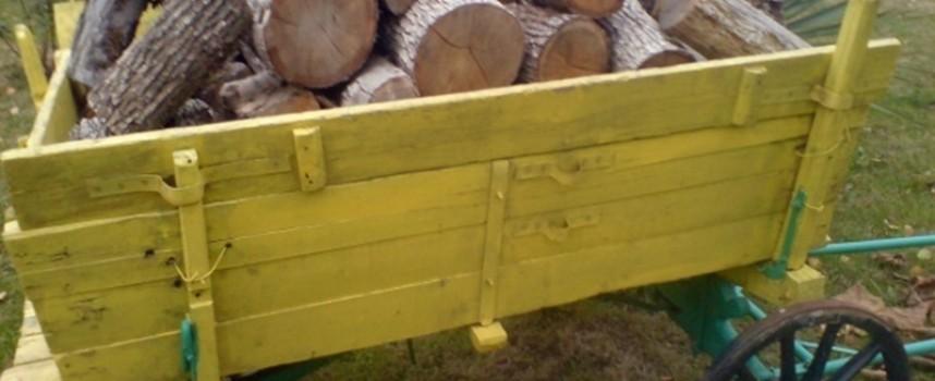 25 годишен от Левски прибрал 3 кубика дърва за огрев, разследват го