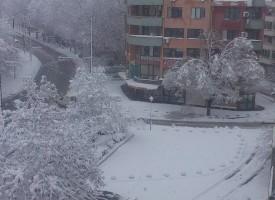 Пожарникари чистят счупени клони в Пазарджик, 30 сигнала за проблеми в областта