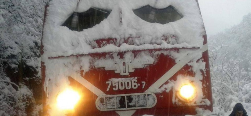 Няма спрени влакове на теснолинейката