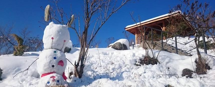Такъв снежен човек не сте виждали