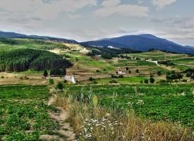 Поляните край Аврамово стават сцена на първия събор на теснолинейката