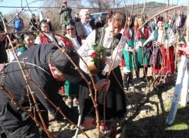 В неделя: Празници на виното, любовта и футбола гласят в Калугерово