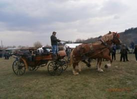Вижте най-красивите коне, които мериха сили в Калугерово