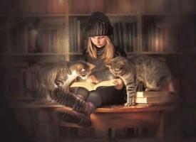 """Какво четеш: """"Изгубеният рай"""" завладя читателите на книжарница """"Хермес"""" – Пазарджик"""