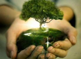 ДНЕС: Да угасим лампи и уреди за час заради Земята