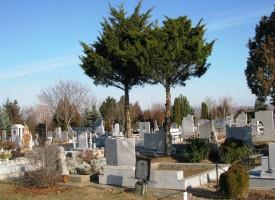 В Лом: Да получиш от умрял писмо