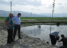 В Септември: Зарибиха няколко обществени водоема