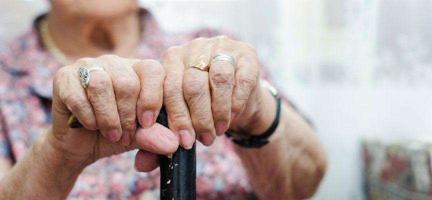 """УТРЕ: НОИ пуска нова електронна услуга """"прогнозен размер на пенсията"""""""