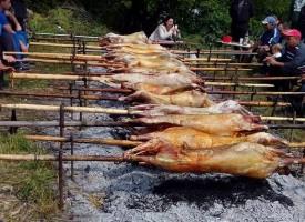 Над 500 агнета изпекоха днес в Паталеница