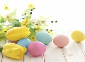 Къщовница: Памукът спасява яйцата от напукване
