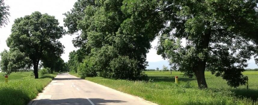 РИОСВ с масирани проверки за чистотата на републиканските и общински пътища