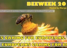 Бележим Седмицата на пчелите до 15 юни, принцът на Монако брани дивите