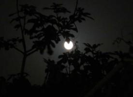 На 7-ми срещу 8-ми август гледайте лунно затъмнение