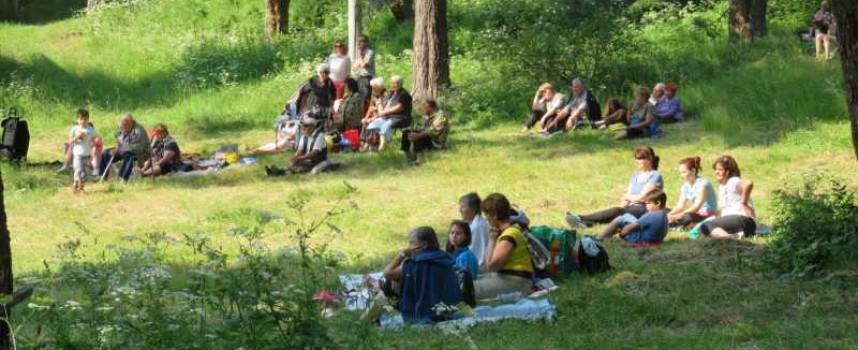 Българите бяха за гъби, на бира и туризъм – резултатите? Вижте ги