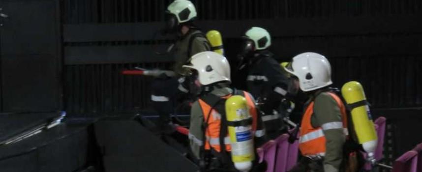 Велинград: Пожарникари спасиха дузина прасенца, Камаз и 20 тона въглища