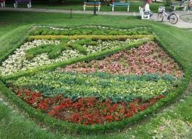 Два нови чинара и поливна система в парка на Септември