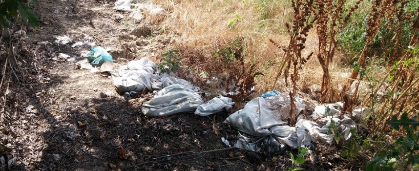 Бял бус разпилява боклуци край Синитово, РИОСВ и кметството да се сезират