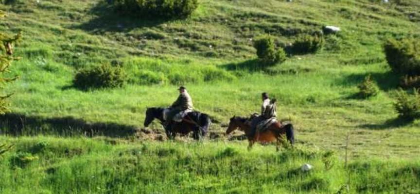 """В Септември: Туристите от """"Незабравка"""" тръгват на 20-то юбилейно лятно екскурзионно"""