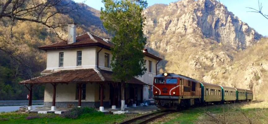 Теснолинейката тръгна с повече вагони заради туристите