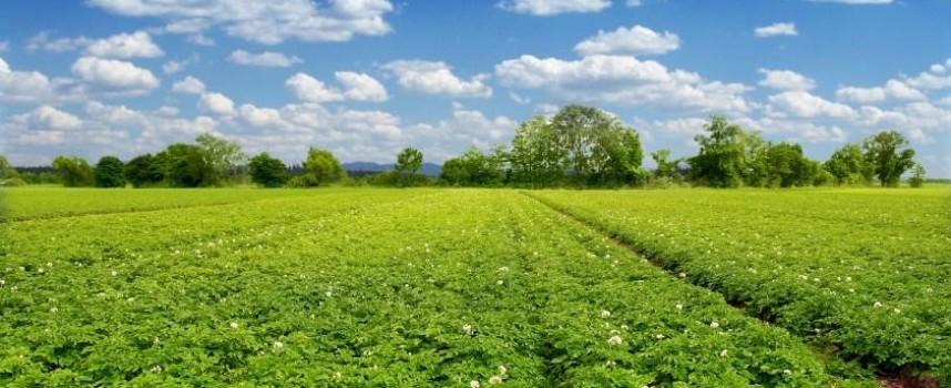 Инспекцията по труда с турне от информационни срещи за земеделците