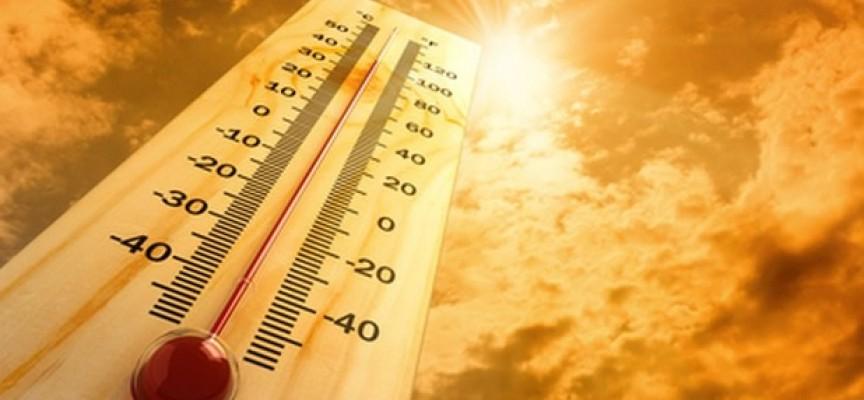 БЧК: Четири опасни болести ни дебнат в жегата, вижте кои