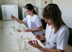 Лаборантки рисуваха синигер с микроорганизми, спечелиха конкурс
