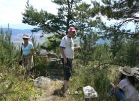 Планирайте за утре пикник в планината, жегата ще стигне 36 градуса