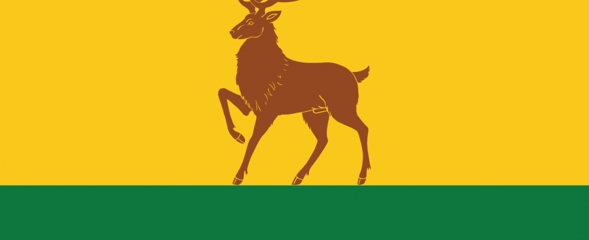 Село Синитово вече има собствено знаме