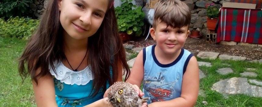 Деца спасиха болно бебе совичка в Паталеница